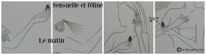 Sensuelle et féline Givenchy & clarisse monereau